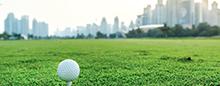 Поля для гольфа — Raffles Dubai