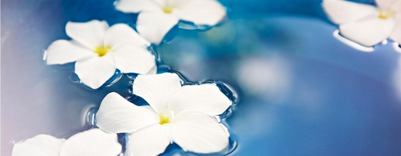 باقات الزهور بالمنتجع الصحي في فندق رافلز مكة