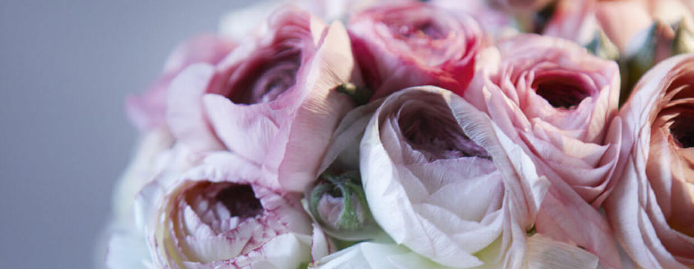 花のディテール
