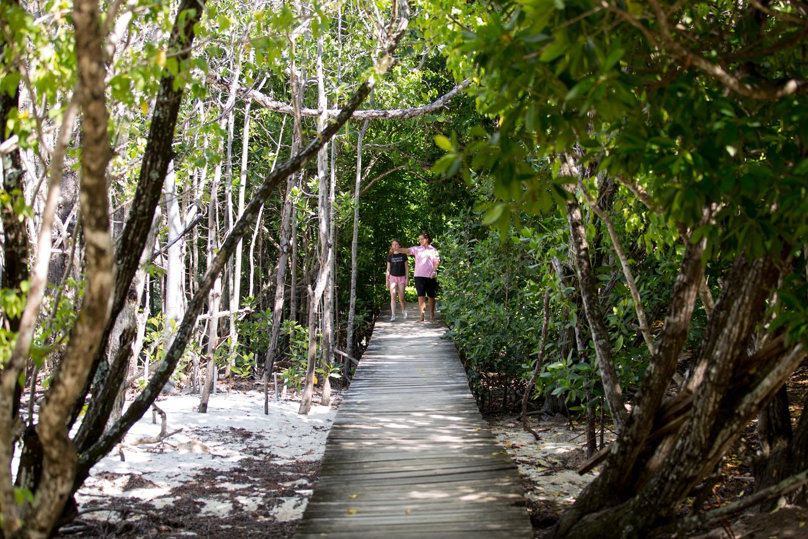 exploring the island itself
