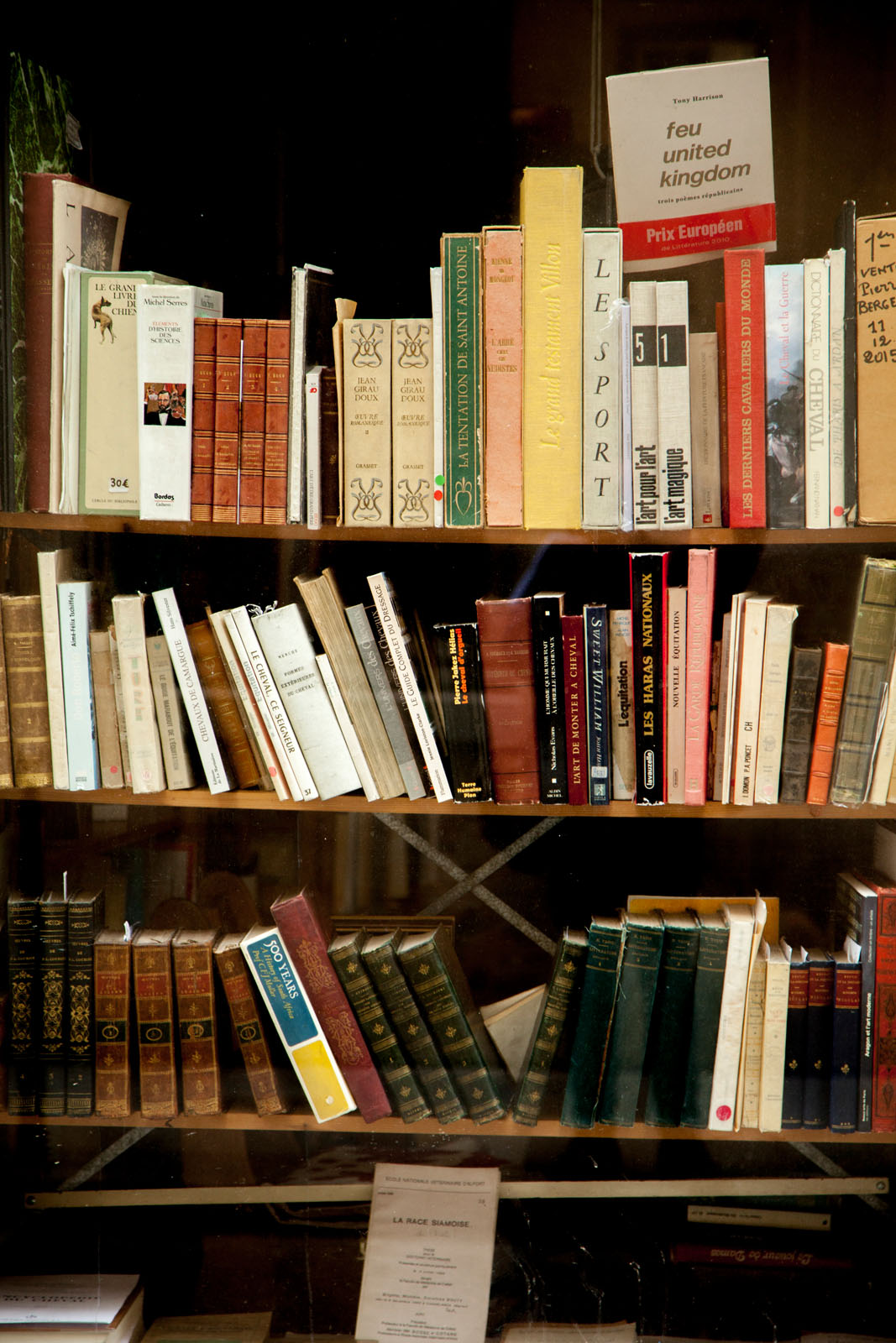 lose yourself in a good book at Librairie Galignani