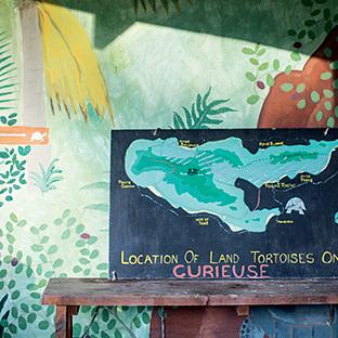 Land of tortoises map
