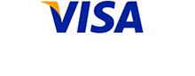 Visa 徽标 2
